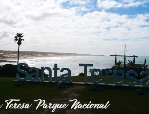 Cinco cosas que deberías saber si vas a visitar Punta del Diablo: